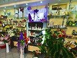 Среди цветов, салон цветов